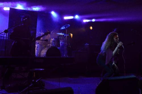 VioletBlend-Milano15
