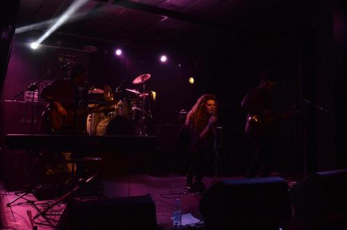 VioletBlend-Milano17