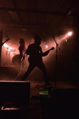 VioletBlend-Milano23