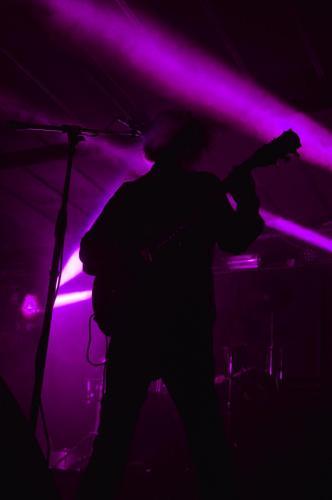 VioletBlend-Milano8